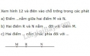 Bài 11 trang 107 - Sách giáo khoa toán 6 tập1