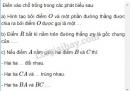 Bài 22 trang 112 SGK Toán 6 tập 1