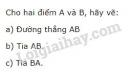 Bài 25 trang 113 SGK Toán 6 tập 1