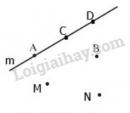 Bài 6 trang 105 SGK Toán 6 tập 1