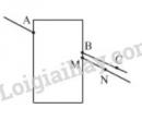 Bài 8 trang 106 SGK Toán 6 tập 1