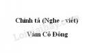 Chính tả bài Vàm Cỏ Đông trang 110 SGK Tiếng Việt 3 tập 1