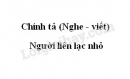 Chính tả bài Người liên lạc nhỏ trang 114 SGK Tiếng Việt 3 tập 1
