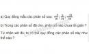 Bài 28 trang 19 SGK Toán 6 tập 2