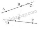 Bài 39 trang 116 SGK Toán 6 tập 1