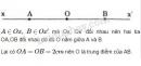 Bài 61 trang 126 SGK Toán 6 tập 1