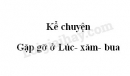 Kể chuyện Gặp gỡ ở Lúc- xăm- bua trang 99 SGK Tiếng Việt 3 tập 2