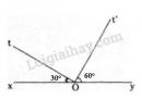 Bài 29 trang 85 SGK Toán 6 tập 2