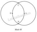 Bài 38 trang 91 SGK Toán 6 tập 2