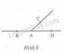 Bài 8 trang 75 SGK Toán 6 tập 2