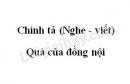 Chính tả bài Quà của đồng nội trang 129 SGK Tiếng Việt 3 tập 2