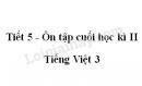 Tiết 5 - Ôn tập cuối học kì II trang 141 SGK Tiếng Việt 3 tập 2