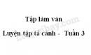 Tập làm văn: Luyện tập tả cảnh trang 31, 32 SGK Tiếng Việt lớp 5 tập 1