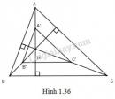 Bài 1 trang 29 SGK Hình học 11
