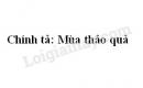 Chính tả: Mùa thảo quả trang 114 SGK Tiếng Việt 5 tập 1