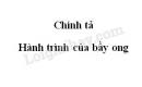 Chính tả: Hành trình của bầy ong trang 125 SGK Tiếng Việt 5 tập 1