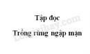 Soạn bài Rừng ngập mặn trang 128 SGK Tiếng Việt 5 tập 1
