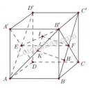 Bài 6 trang 122 SGK Hình học 11