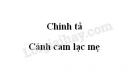 Chính tả: Cánh cam lạc mẹ trang 17 SGK Tiếng Việt 5 tập 2