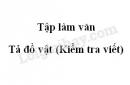 Tập làm văn: Tả đồ vật (Kiểm tra viết) trang 75 SGK Tiếng Việt lớp 5 tập 2
