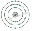 Bài 2 trang 31 sgk hóa học 8