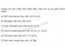 Bài 3 trang 26 sgk hóa học 8