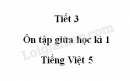 Tiết 3 - Ôn tập giữa học kì 1 trang 96 SGK Tiếng Việt lớp 5 tập 1