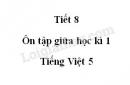 Tiết 8 - Ôn tập giữa học kì 1 trang 100 SGK Tiếng Việt 5 tập 1