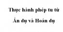 Soạn bài Thực hành phép tu từ ẩn dụ và hoán dụ trang 135 SGK Ngữ văn 10