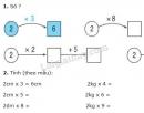 Bài 1, 2, 3, 4, 5 trang 96 sgk Toán 2