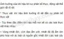 Bài 1 trang 82 SGK Địa lí 6