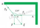 Bài 8 trang 58 SGK Vật lí 10