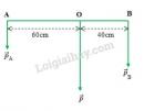 Bài 3 trang 106 sgk Vật lý lớp 10