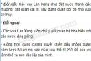 Nêu những chính sách đối nội và đối ngoại của vua Lan Xang