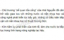 Đánh giá chính sách hạn chế ngoại thương của nhà Nguyễn