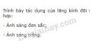 Bài 2 trang 179 SGK Vật lí 11