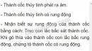 Bài C4 trang 29 SGK Vật lí 7