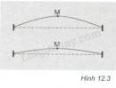 Bài C5 trang 36 SGK Vật lí 7