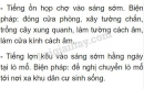 Bài C6 trang 44 SGK Vật lí 7