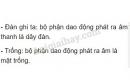 Bài C7 trang 29 SGK Vật lí 7