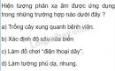 Bài C8 trang 42 sgk vật lí 7