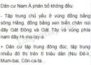 Quan sát hình 11.1 (SGK trang 37) em có nhận xét gì về sự phân bố dân cư của Nam Á?