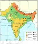 Vị trí địa lí và địa hình khu vực nam Á
