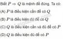 Bài 17 trang 26 SGK Đại số 10
