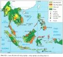 Cơ cấu kinh tế Đông Nam Á đang có sự thay đổi