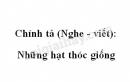 Chính tả: Những hạt thóc giống trang 47 SGK Tiếng Việt 4 tập 1