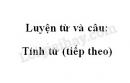 Luyện từ và câu: Tính từ (tiếp theo) trang 123 SGK Tiếng Việt 4 tập 1