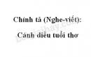 Chính tả: Cánh diều tuổi thơ trang 147 SGK Tiếng Việt 4 tập 1