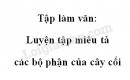 Tập làm văn: Luyện tập miêu tả các bộ phận của cây cối trang 41 SGK Tiếng Việt 4 tập 2