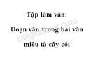 Tập làm văn: Đoạn văn trong bài văn miêu tả cây cối trang 52 SGK Tiếng Việt 4 tập 2